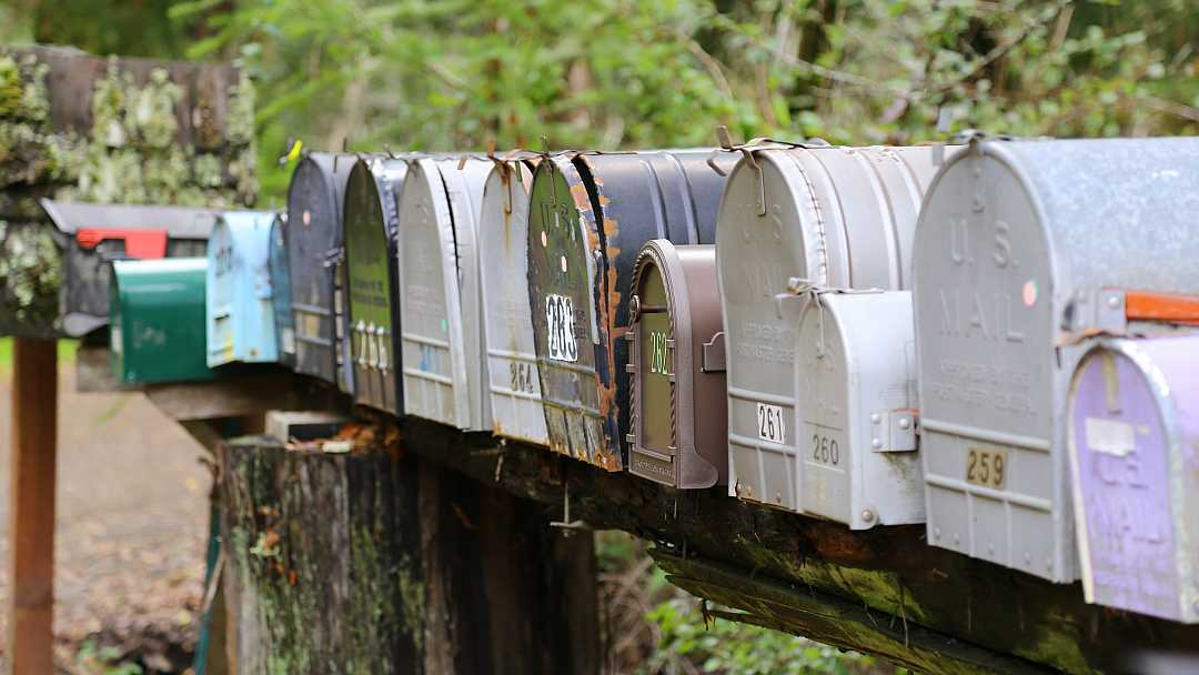 Простая форма подписки с модулем Divi Email Optin